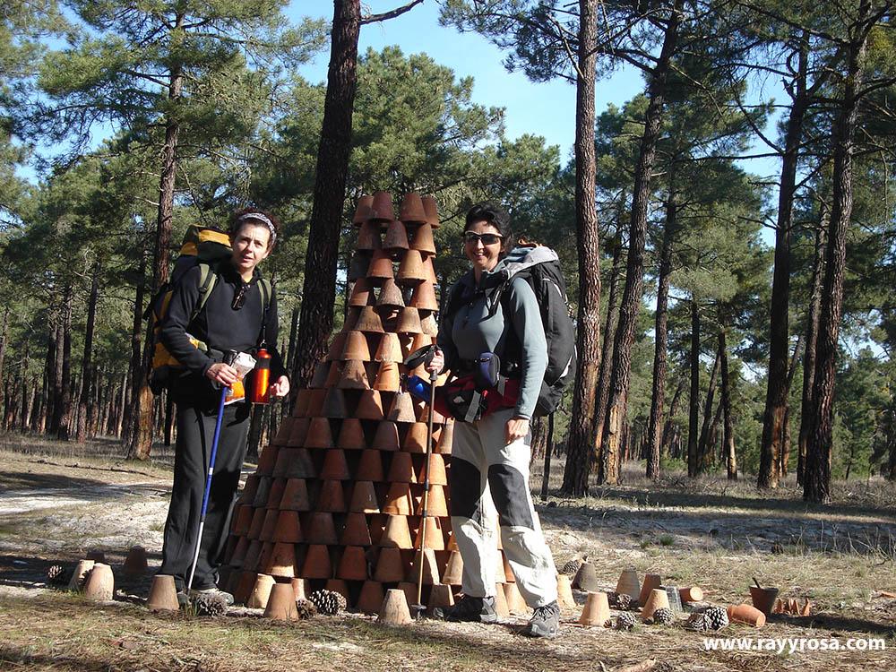 Los tiestos del pinar