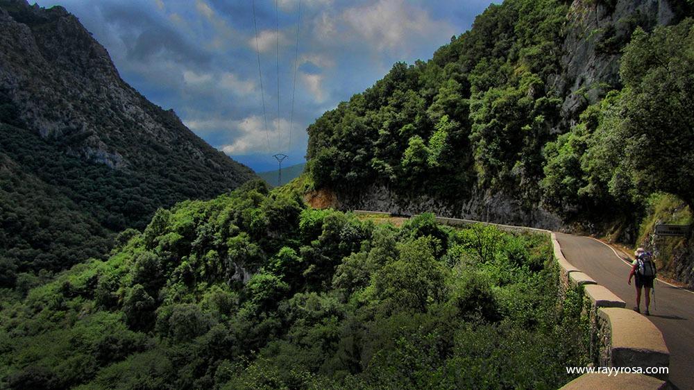 Camino de Sobrelapeña